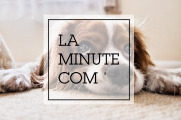 minute_communication_vignette_hypee