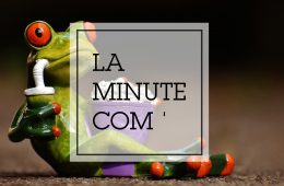Minute-com'-vignette