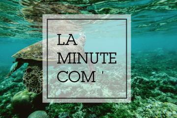La Minute Com'