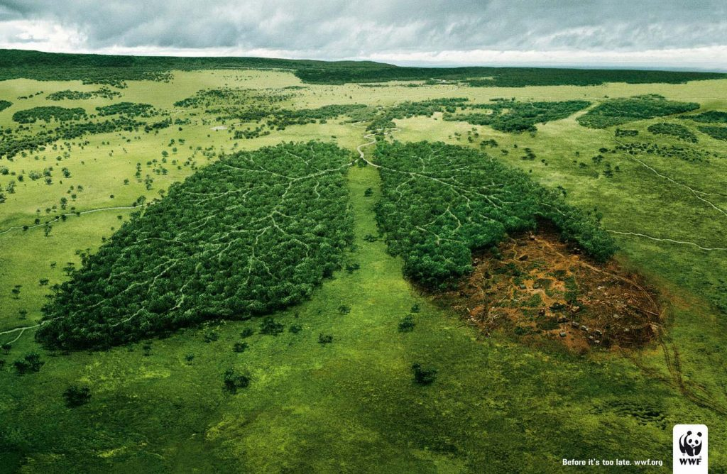 WWF Campagne